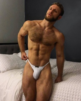 malehunkgayart.wordpress.com 5 (239)