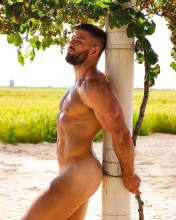 malehunkgayart.wordpress.com 5 (253)